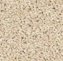 Plush and Texture Carpeting
